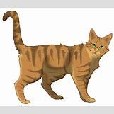 Warriors Cats Crookedstar   900 x 767 png 294kB