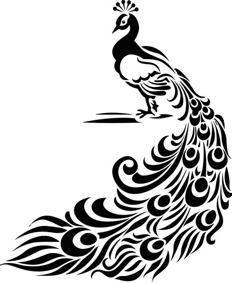 vintage peacock feather stencil  vinyl decal  vector