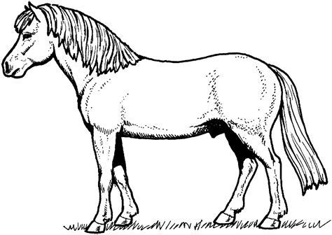 black and white coloring pages of horses horse coloring pages getcoloringpages com