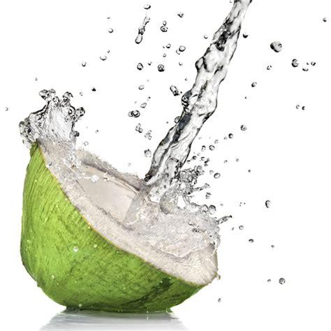 Diy Coconut Water Kefir