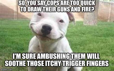 Pitbull Memes - smiling pitbull www pixshark com images galleries with
