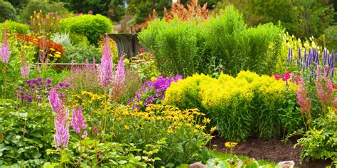 Popular Flowers For Gardens 4 Key Trends Changing Our Gardening Habits Popular
