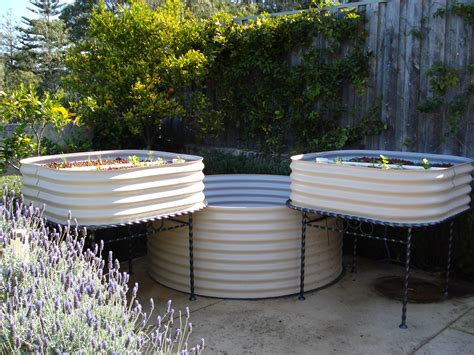 home aquaculture backyard fish farming beautiful aquaponics systems suburban farmer suburban