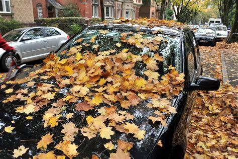 Feuchtigkeit Im Auto Geruch by Ratgeber Feuchtigkeit Im Auto