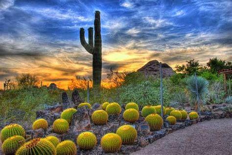 Amazing Scottsdale Botanical Garden #3: Phoenix-Arizona-2.jpg