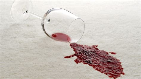 remove red wine from couch how to remove wine stains evergreen carpt care