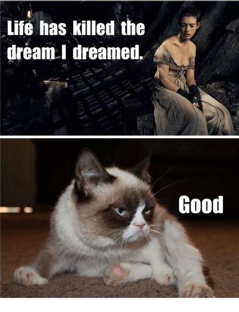 Miserable Cat Meme - grumpy cat les mis tcivictheatre summer 2013 les