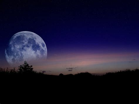 moonlit night picture weneedfun