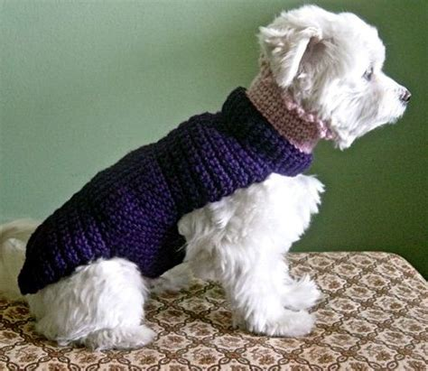 boat dog sweater 17 best images about crochet on pinterest free pattern
