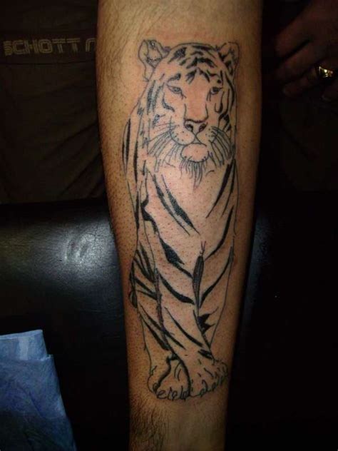 tiger forearm tattoo designs 12 white tiger tattoos to model me now