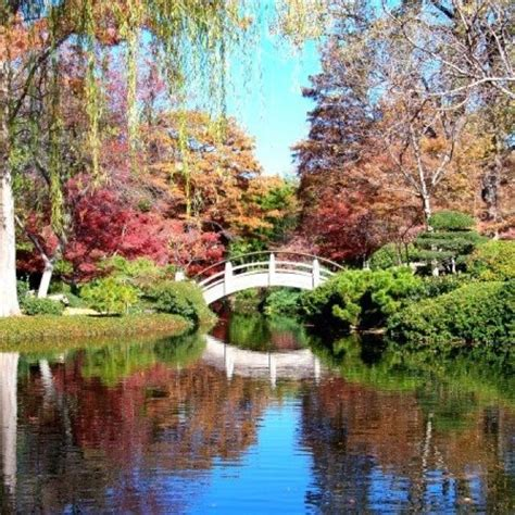 Pin By Malinda Sargent On Beautiful Flowers Pinterest Fort Worth Botanical Gardens Japanese Garden