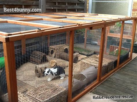 best 25 rabbit run ideas on rabbit habitat