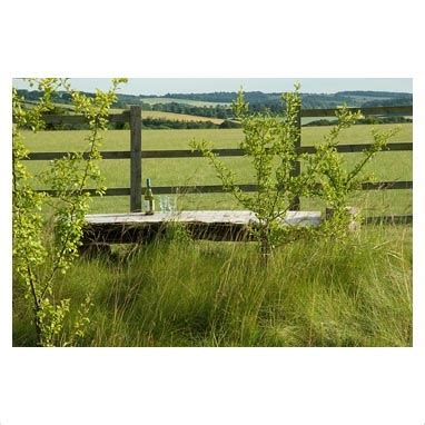 bench made out of tree trunk frompo home page