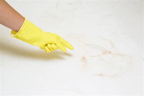 matratze reinigen matratze reinigen 187 diese hausmittel wirken wunder