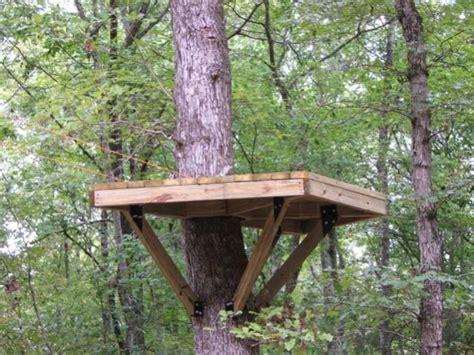 backyard zip line platform talentneeds