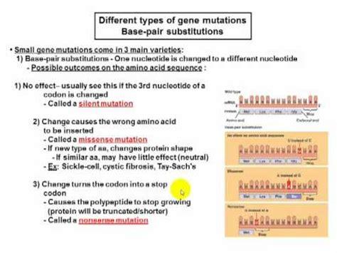what are neutral mutations lecture 8 part c silent nonsense missense neutral