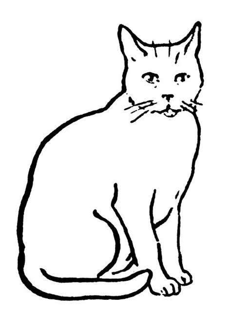 Two Cats Outline by Cat Line Drawing Cats Lost Cats And Texts
