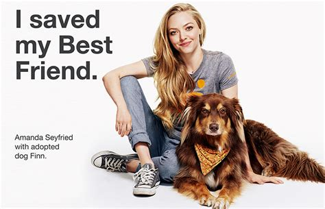 Amanda Seyfried Helps Animals   Best Friends Animal Society