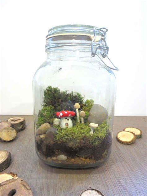 fairy terrarium best 20 terrarium ideas on