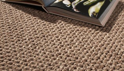 How To Clean Sisal Carpet Carpet Ideas Clean Rug