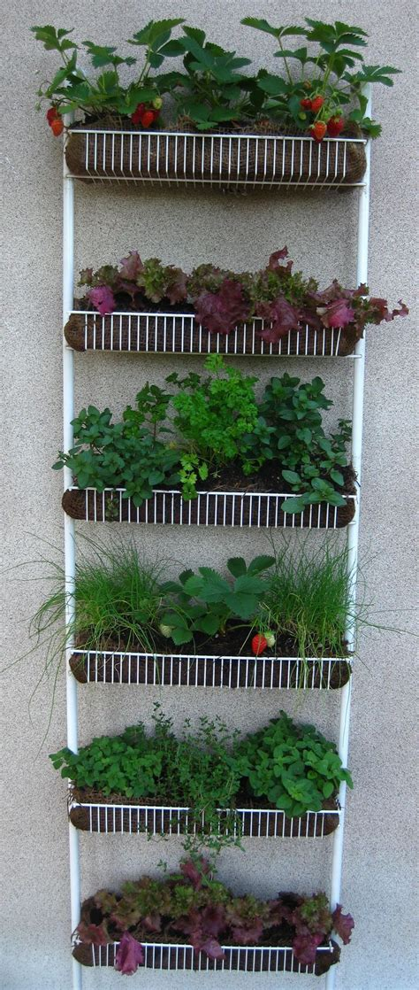 Vertical Garden Rack 17 Best Ideas About Vertical Gardens On Wall