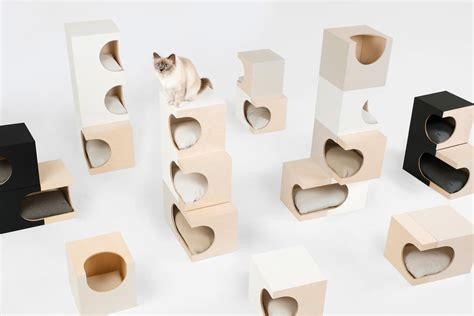 design works home is where the cat is lunarbox a cat home that will work with the design of