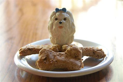 pears for dogs recipe pear molasses biscuits dogtipper