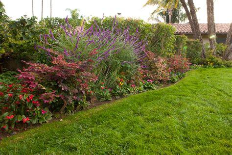 color services santa barbara plant selection and planting advice santa barbara ventura