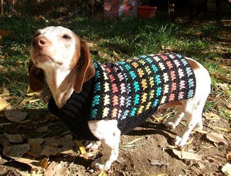 crochet pattern for large dog coat copper llama studio crochet dachshund or small dog coat