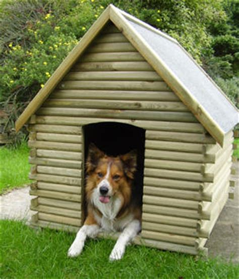 kennels are they for your pet living years pets
