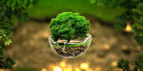 apple wallpaper earth day earth day wallpapers pictures images