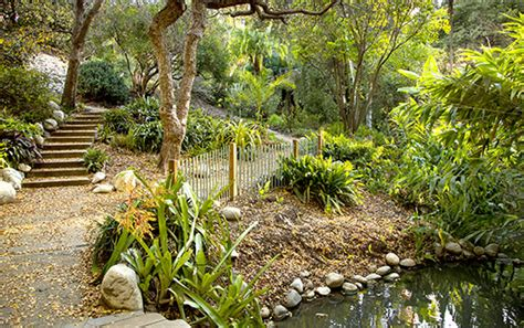 Ucla Botanical Gardens by A Proper Entryway For Ucla S Living Museum Web Exclusive
