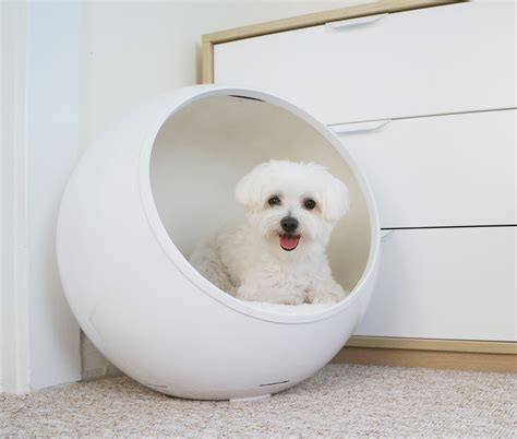 temperature controlled dog house 20 of the coolest pet technology developments that make your dog s life easier page
