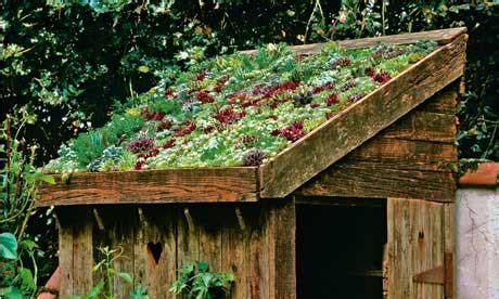 lia leendertz  sedum roofs  tiny gardens life