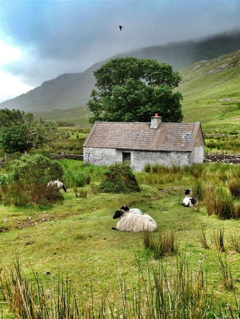 cottage in irlanda 25 best ideas about cottages ireland on