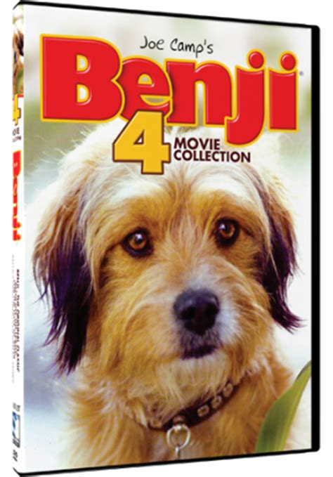 benji the breed ramblings of a coffee addicted writer dvd review benji 4 collection