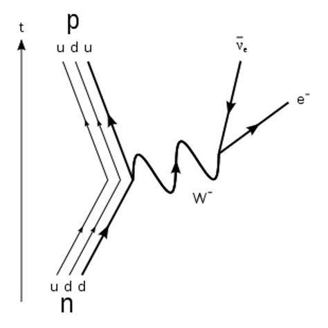 feynman diagram software research may yield new z boson and fifth of nature