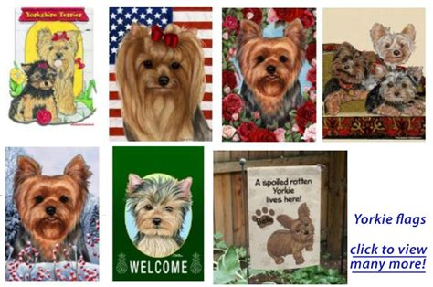 how to house a yorkie terrier terrier flags garden decor