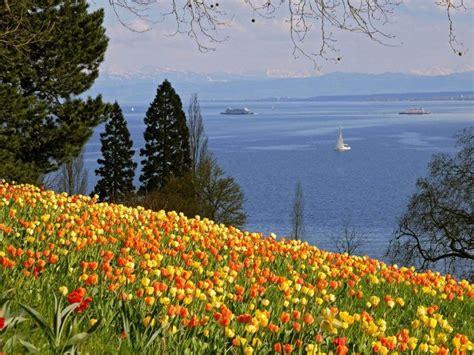 insel mainau  flower island  lake constance weneedfun