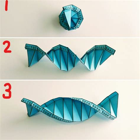 Origami Competent Cells - dna origami pdf images craft decoration ideas