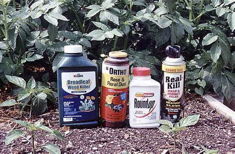 Garden Pesticides by Top 10 Reasons Why You Really Should Read The Pesticide
