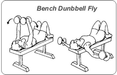 dumbbell bench fly 筋トレ 部位別筋肉トレーニング方法