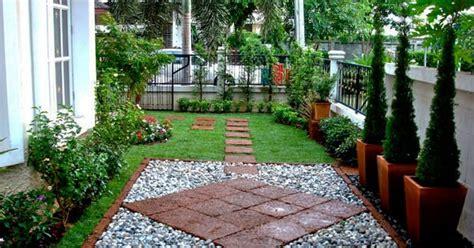 Renda Rumput Merah Rln 024 bumi hijau nursery 002279488 d maintenance rumput dan lanskap