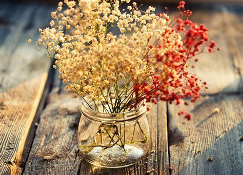 decoracion con flores secas decoraci 243 n con flores secas naturales revista tendenciadeco