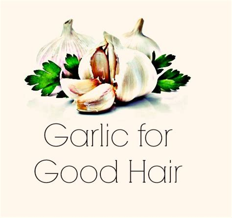 Garlic And Hair Shedding by Garlic For Hair Loss And Shedding Global Couture
