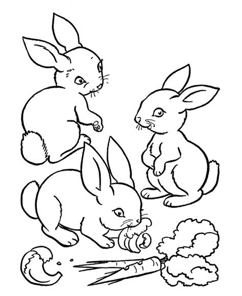 little bunny coloring pages baby bunny coloring pages coloring home