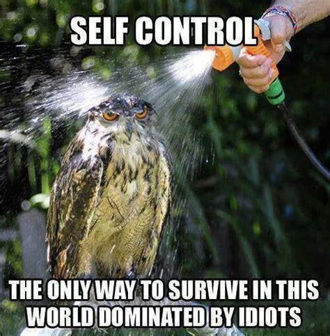Control Meme - funny self control