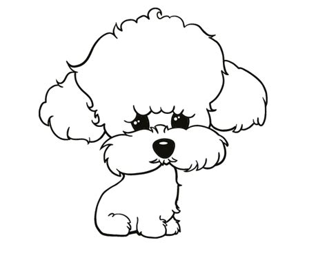 poodle dog coloring coloring pages