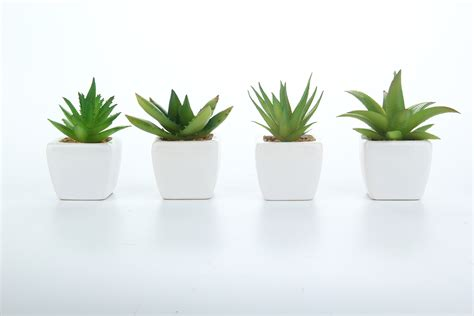 mini potted plants set of 4 modern white ceramic mini potted artificial