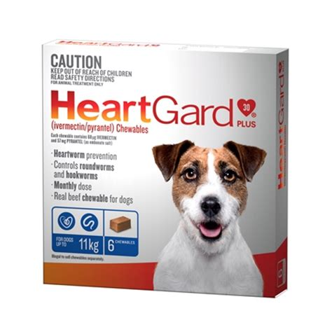 heartgard for puppies heartgard plus for dogs 6 pack innovations